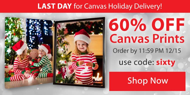 Save 60% on everything, on all Canvas Prints and Framed Canvas