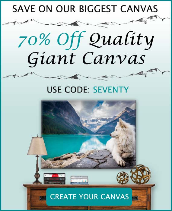 Save big when you shop for Canvas prints, cards and books on MailPix