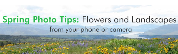 spring photo tips flowers and landscapes