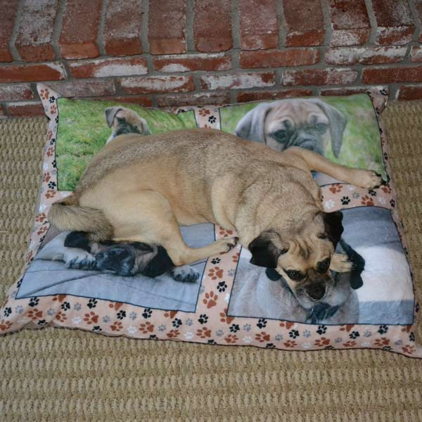 Add a full size 30x40 photo to your dog bed or cat bed